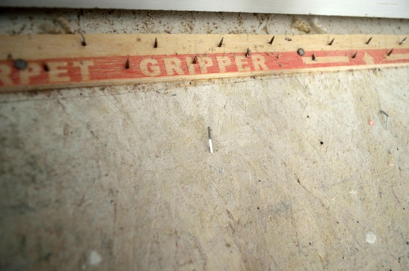 carpet gripper